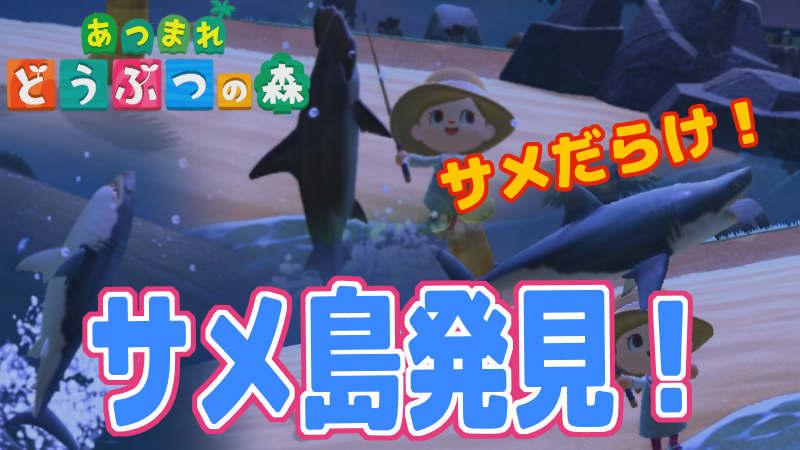 サメ あつ 時間 森